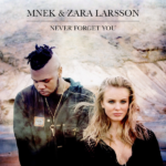 рингтон Zara Larsson feat. MNEK - Never Forget You