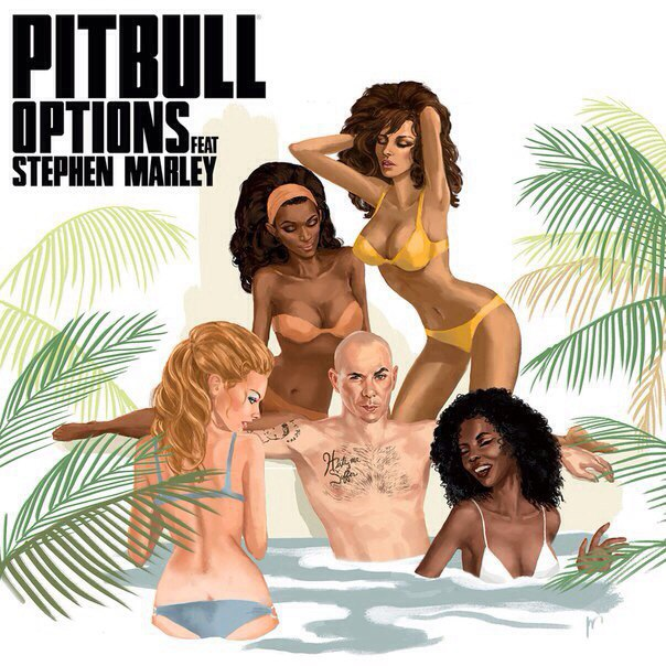 рингтон Pitbull feat. Stephen Marley - Options