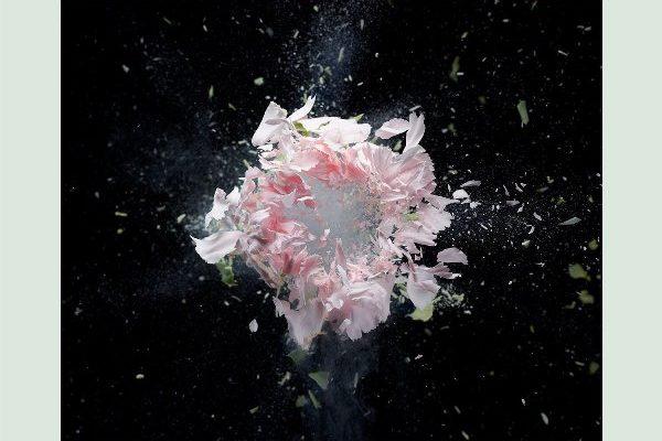 рингтон Zedd feat. Maren Morris & Grey - The Middle