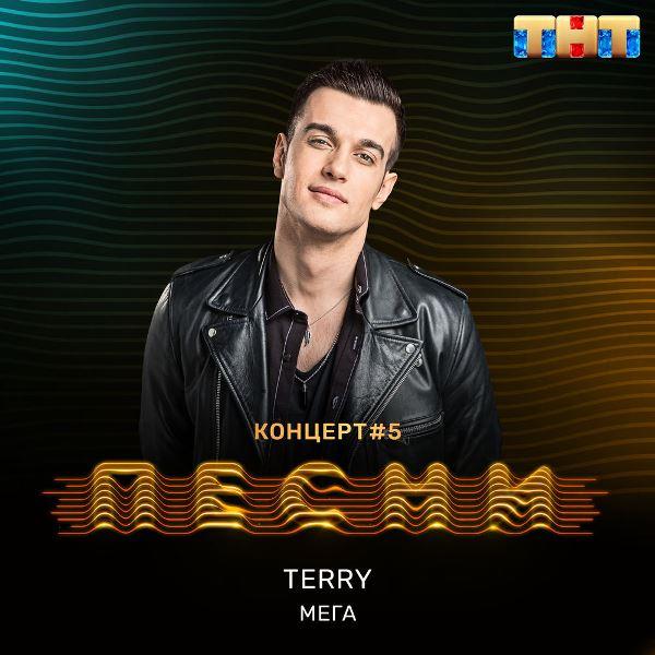 рингтон Terry - Мега